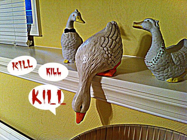 killerducks1