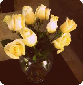 whiteroses2